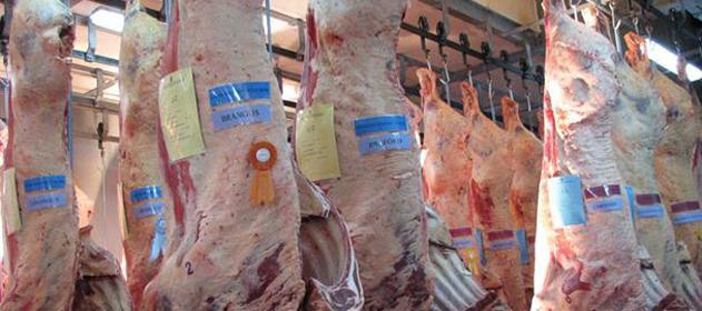 carne-argentina-631