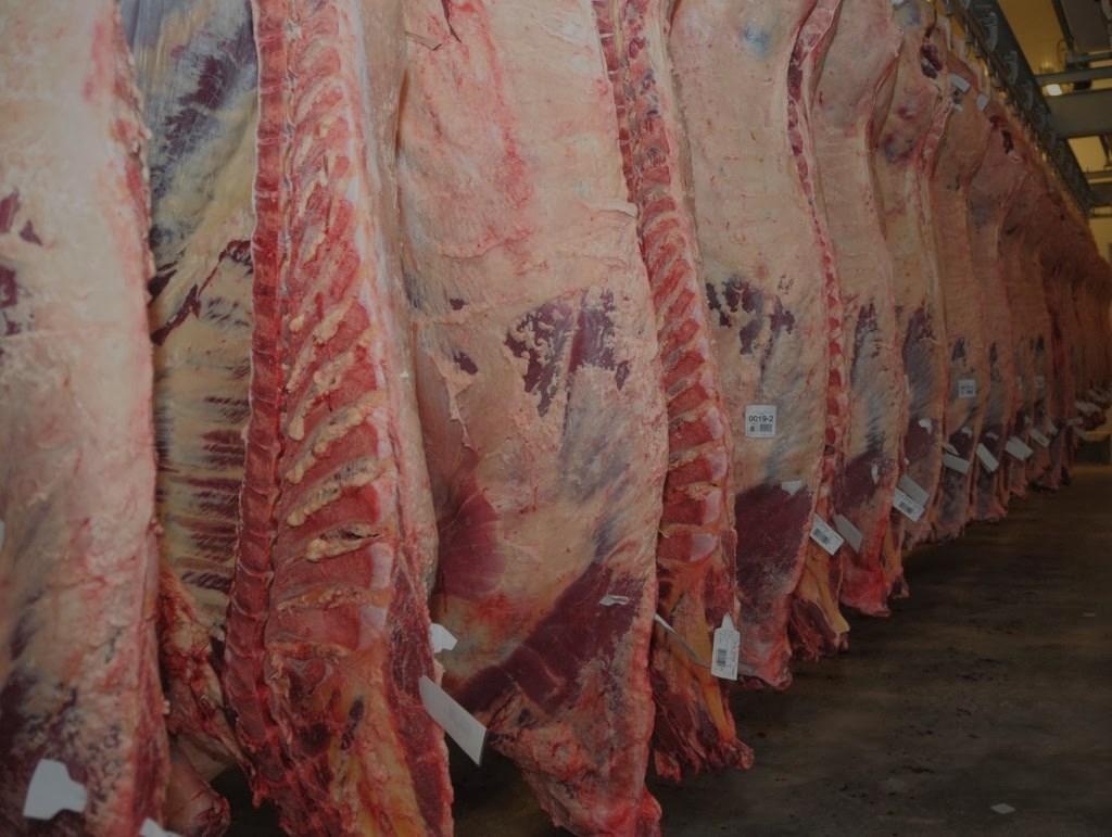 carne-vacuna-mercado