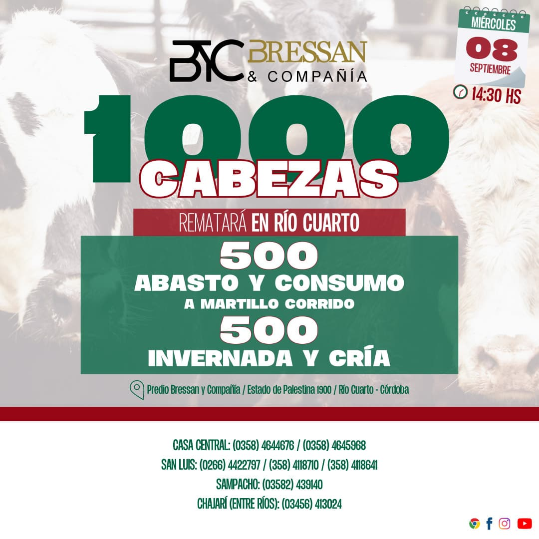 Feed-Remate-8-9-1000-cabezas (1)