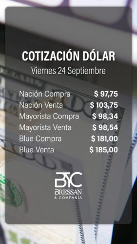 Dolar-24-9